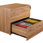 Exec oak side filing unit